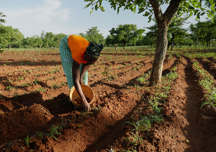 Solidaridad de L'Oréal en Burkina Fasso.