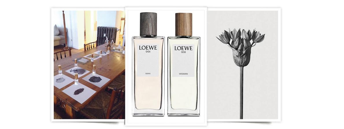 001 Loewe