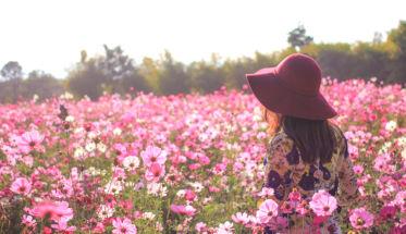Mujer en campo de flores. fragancias que se rinden a la rosa