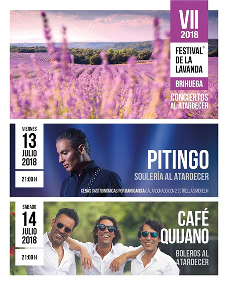 Festival de la Lavanda 2018, Brihuega, Guadalajara