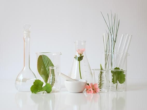 Probetas de laboratorio con elementos vegetales