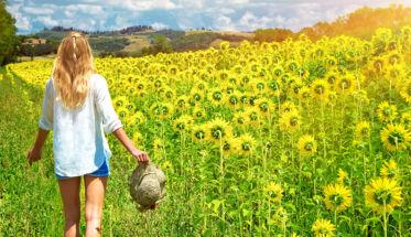 chica caminando en un campo girasoles para el post perfume repelente contra los mosquitos