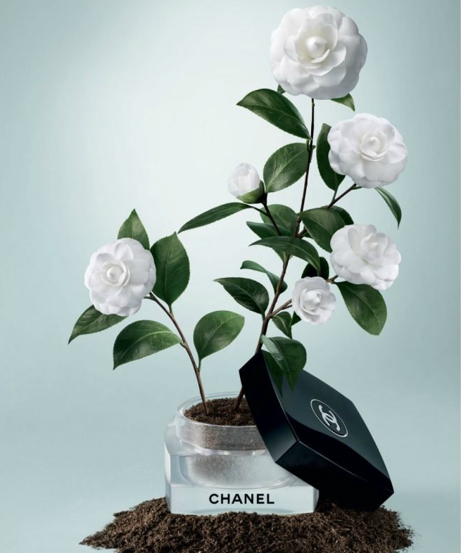La beaute se cultive Chanel